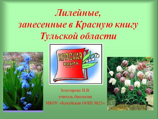 Решебник по русскому языку 1 Класс Бунеев