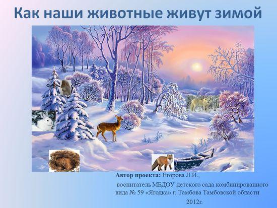 Картинки по теме дикие животные зимой