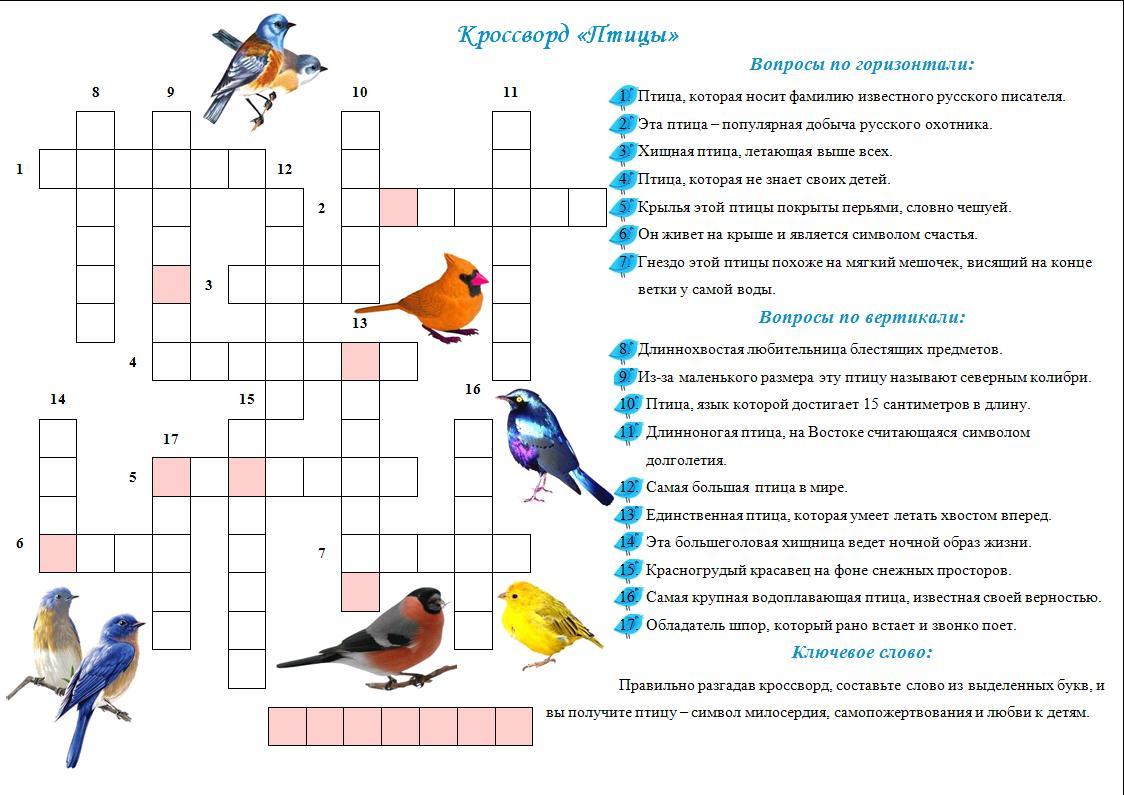 Красворд 7 класс бо пиологии класс птицы с ответами