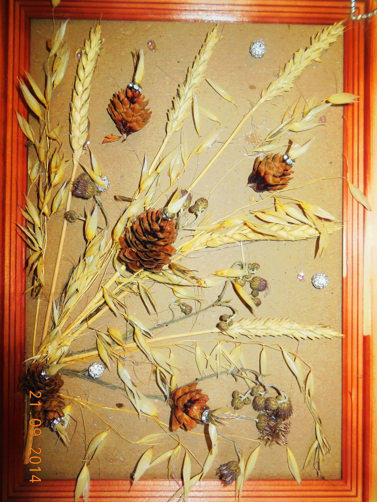 Поделки картины из природного материала осень6