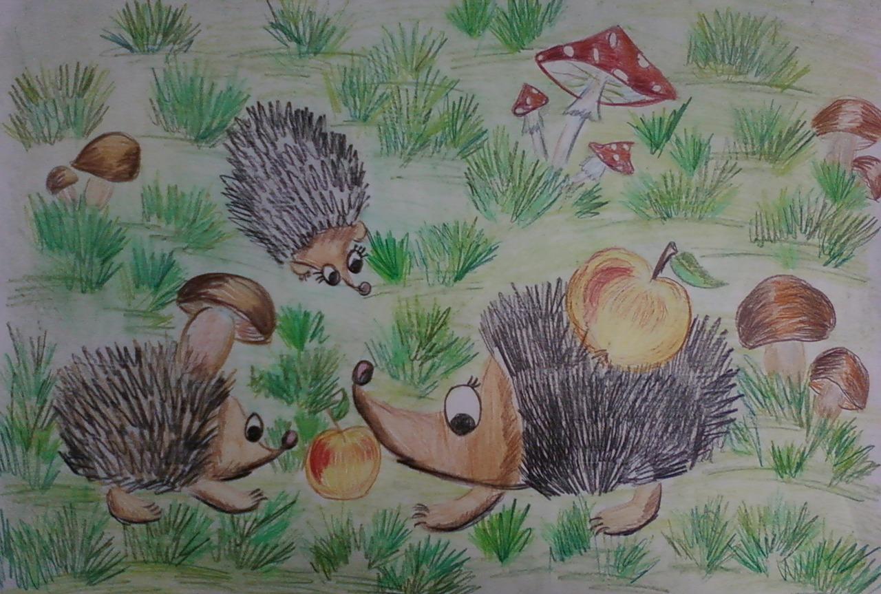 Ежики детские рисунки
