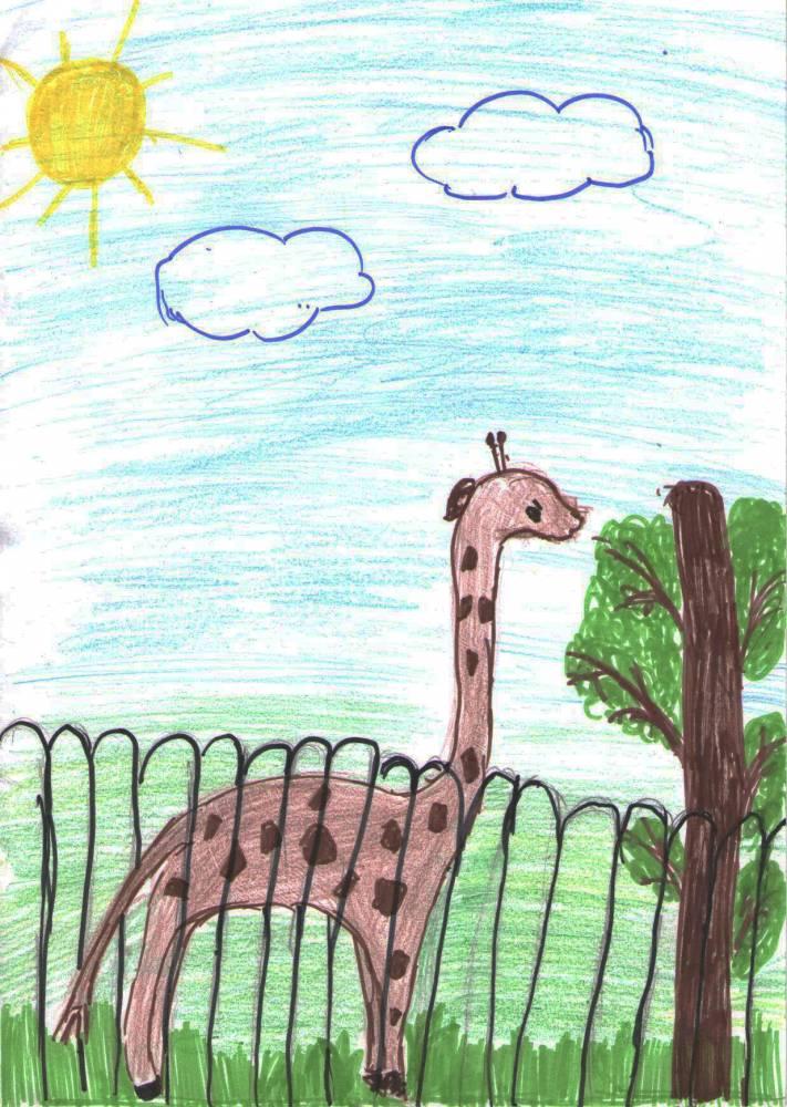 Картинки зоопарк в карандашей